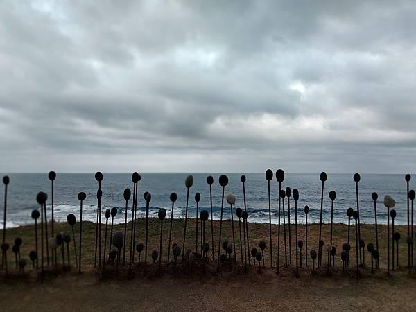 亞亞的加路蘭海岸 (4).jpg