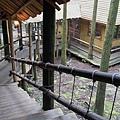新竹縣關西鎮綠光森林綠光小學木屋迴廊2.jpg