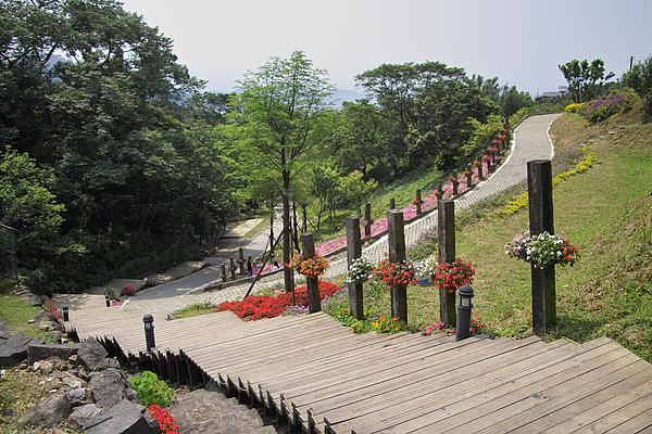 台北北投發現花園迎賓木道全景.jpg