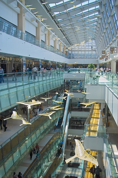 高雄市夢時代購物中心試營運Skylight飛鳥涼.jpg