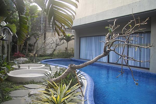 彰化縣紅樓精品旅館巴里島帝后120號房池畔景觀樹&按摩水柱.jpg
