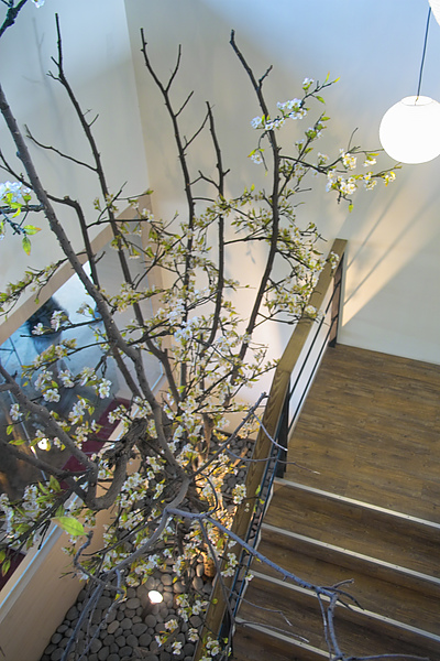 平鎮綠風草原餐廳天井2.jpg