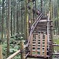 新竹縣關西鎮綠光森林綠光小學瞭望台2.jpg