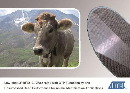 愛特梅爾推出用於動物識別應用的低成本LF RFID IC產品