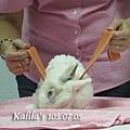 兔子TTouch5