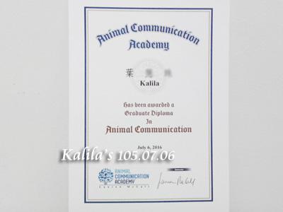 0706動物溝通延伸課程2