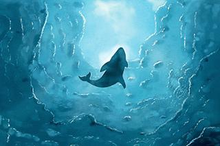 鯨魚s.jpg