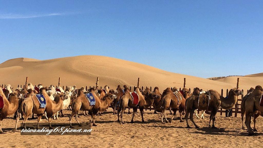 內蒙古風光