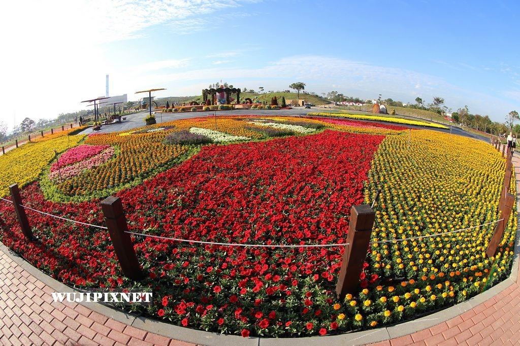 2016台中國際花毯節