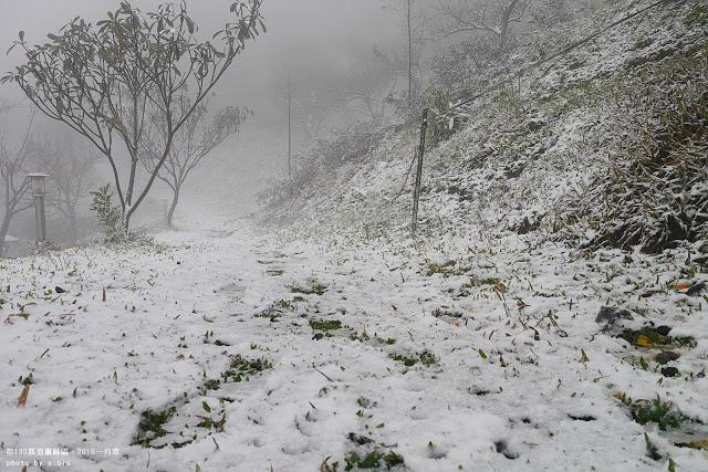 姜麻園下雪 駱駝商旅隊