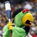 Pirate Parrot 練習打擊