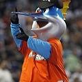 邁阿密馬林魚 Billy The Marlin