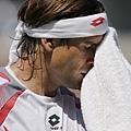 Ferrer 敗給 Djokovic
