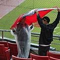 愛國球迷在雨中舉旗吶喊!