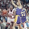 1991總冠軍賽