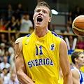 Jonas Jerebko 瑞典