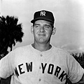 Don Larsen--1956年10月8日(洋基2-0道奇)