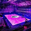 全球首座全場人工智慧數位互動LED「黑曼巴球場」