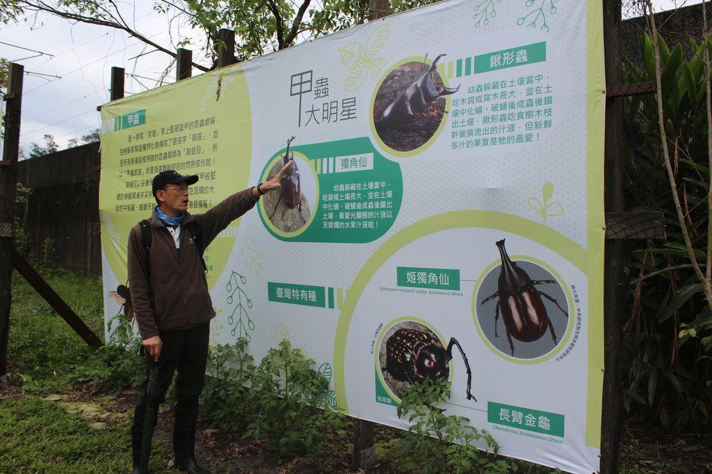 甲蟲導覽1.JPG