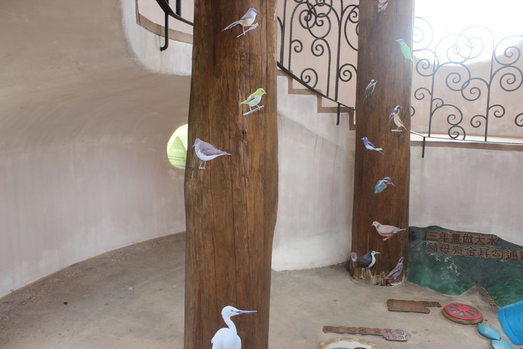 各種鳥類小常識.JPG
