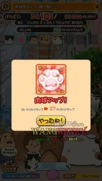 02.小魚Bonus-3.jpg