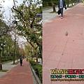 02.決定環境3.jpg