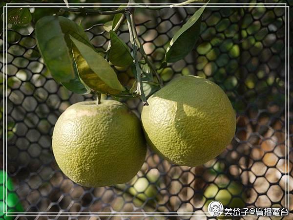 柚葉入浴4.jpg