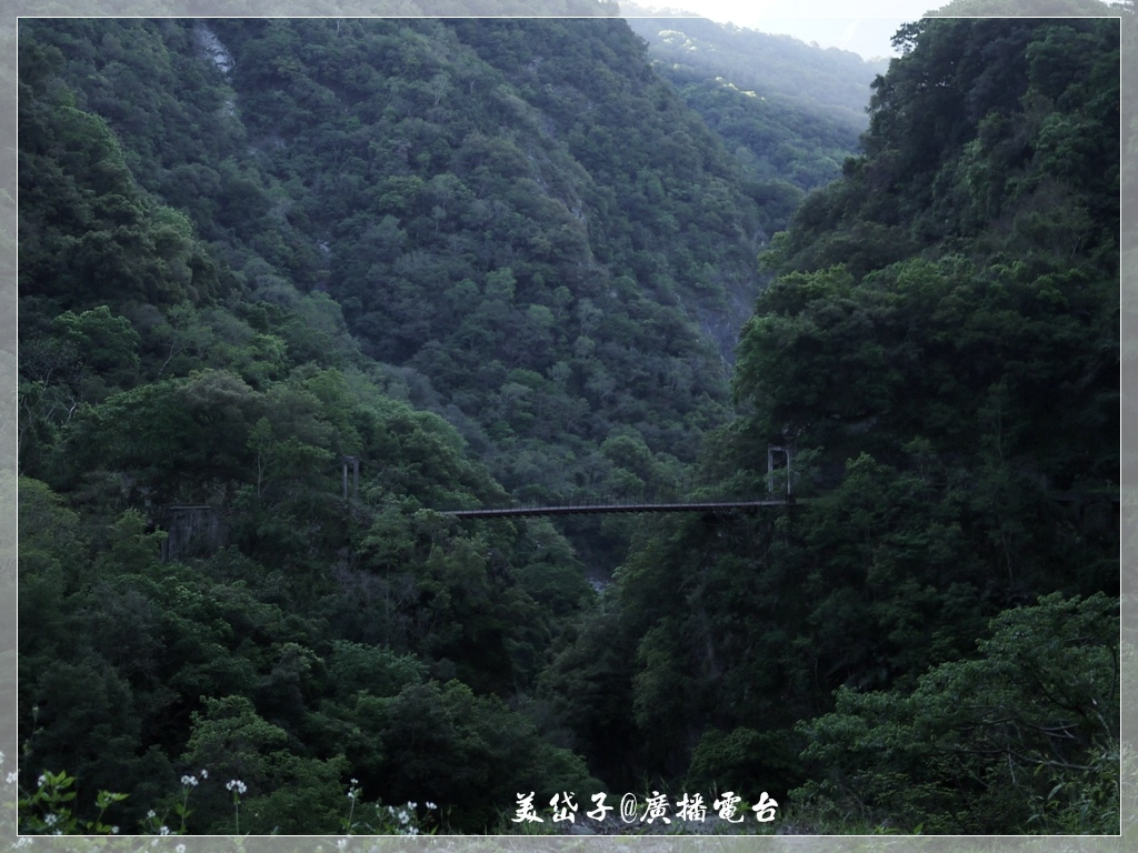 太魯閣沿途風光2.JPG