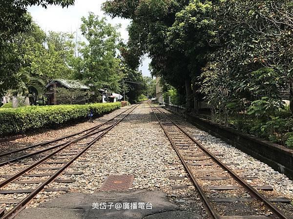 阿里山森林鐵路車庫園區23.JPG