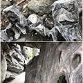 五年千歲公園22.JPG