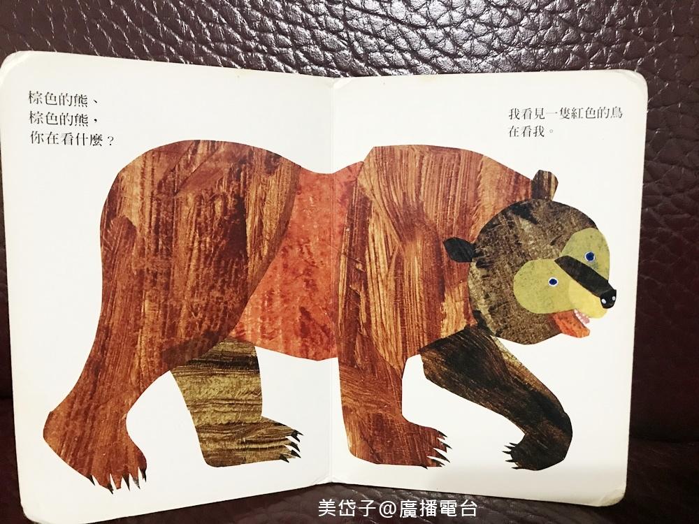 棕色的熊2.JPG