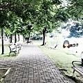 葫蘆埤自然公園6.JPG