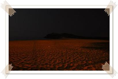 320px-山夜色_004-vert