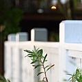 太平酒桶山-法蝶藝術廚房 (7)