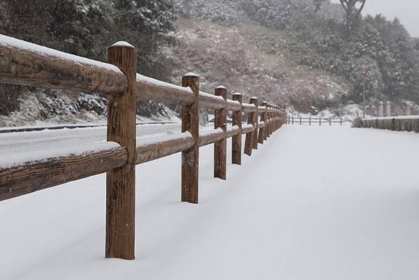 雪 (14).jpg