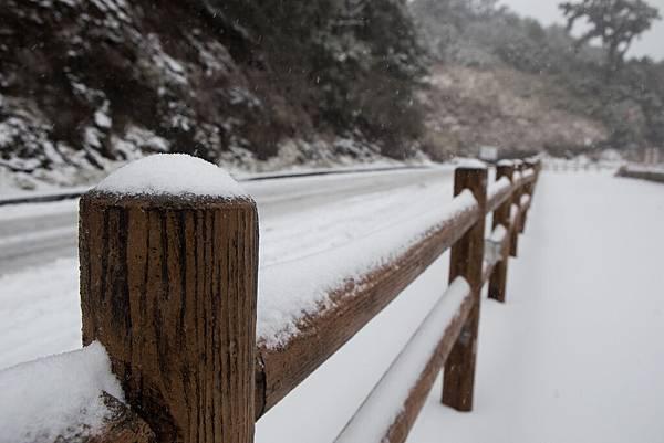 雪 (16).jpg