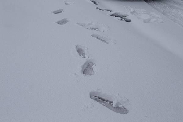 雪 (17).jpg