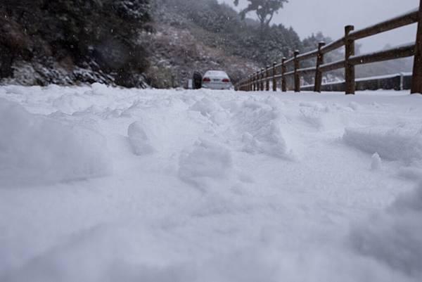 雪 (20).jpg