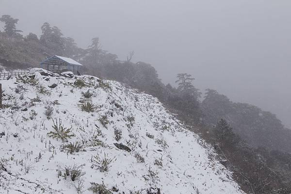 雪 (24).jpg