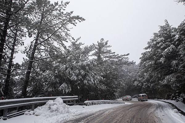 雪 (28).jpg
