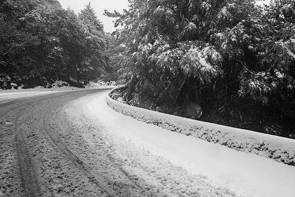 雪 (29).jpg