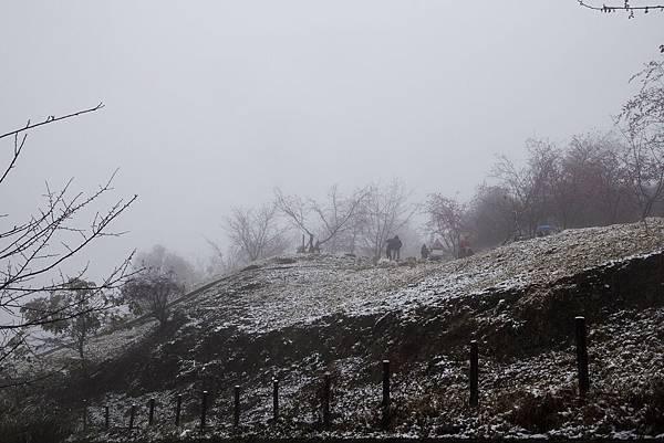 雪 (33).jpg