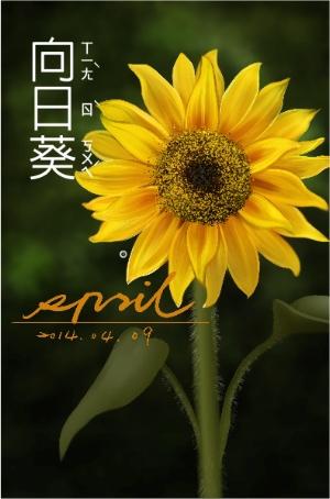 spril畫的-向日葵