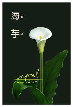 SPRIL-花草系列畫冊-海芋