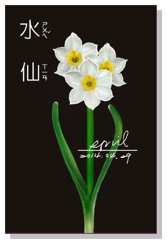 SPRIL-花草系列畫冊-水仙