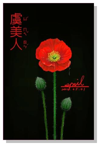 SPRIL-花草系列畫冊-虞美人