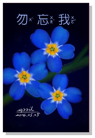 SPRIL-花草系列畫冊-勿忘我