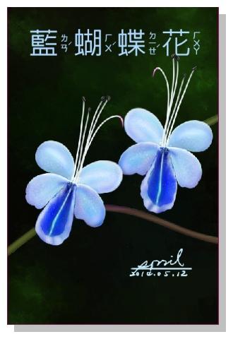 SPRIL-花草系列畫冊-藍蝴蝶花