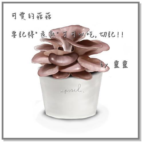 spril畫的菇菇-菇菇(袖珍菇)要煮熟才可以吃