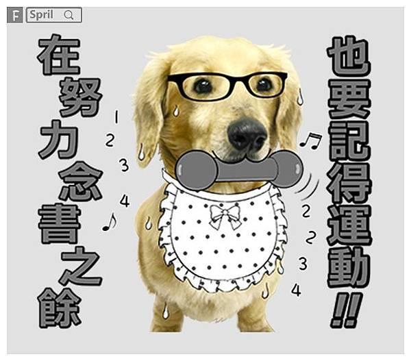 萌寶寶臘腸狗豆腐哥